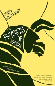 Physics of Sorrow
