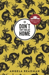 Dont-Try-This-at-Home-_-cover_-FINAL1-300x460