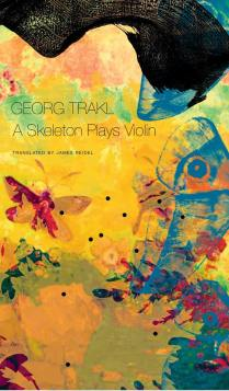 a-skeleton-plays-violin